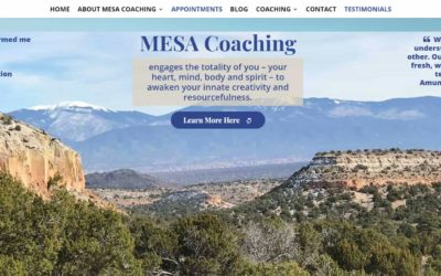 Featured Client: MESA Coaching