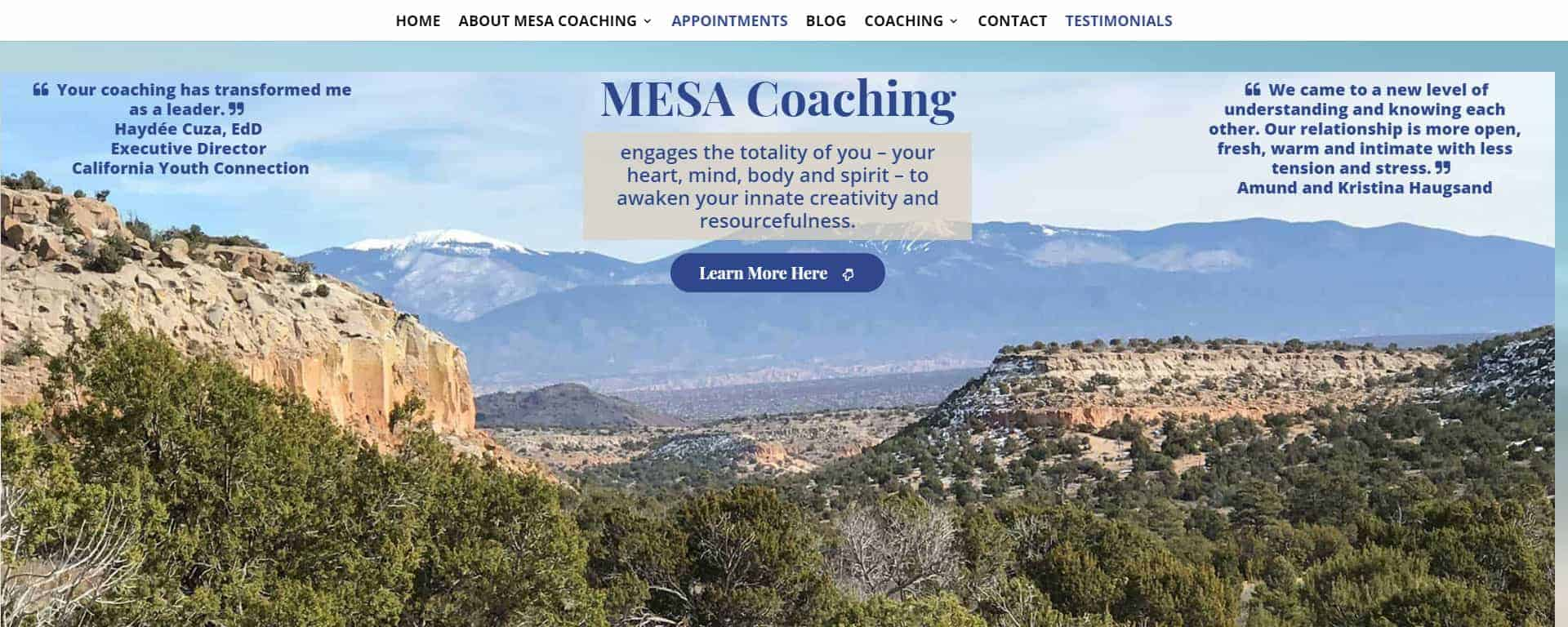 Featured Client: MESA Coaching 1